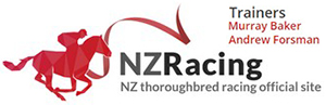 Baker Racing - Horse Racing - Cambridge New Zealand